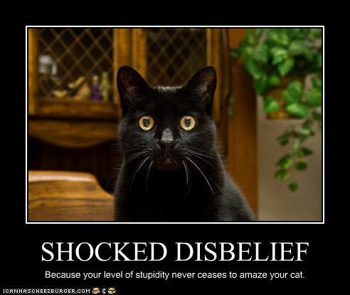 Suspension of Disbelief, Deus Ex Machina's and a crap book by Dean Koontz